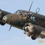 The Daily Warbird Avatar