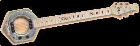 GuitarNutz 2