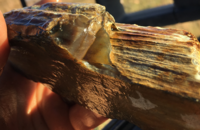 Grassy Butte agate res.png