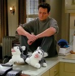 Chandler Bing Avatar