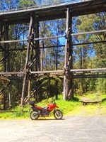 Blog-Noojee-Bridge.jpg