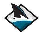 Tampa Bay Bull Sharks Avatar