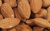 ALMOND NUT.png