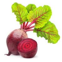 Beetroot2.png