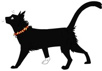 Scourge-warrior-cats-image-service-13514857....jpg