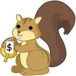 moneysquirrel Avatar