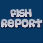 Fish Report Avatar