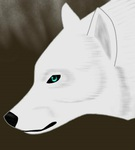 Winterwolf Avatar