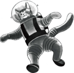 Space Cat Avatar