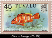 Tuvalu_1979_fish_45c_bleeding_full_s.jpg