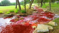 Blood Red River.jpg
