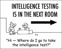 Intelligence Test.jpg