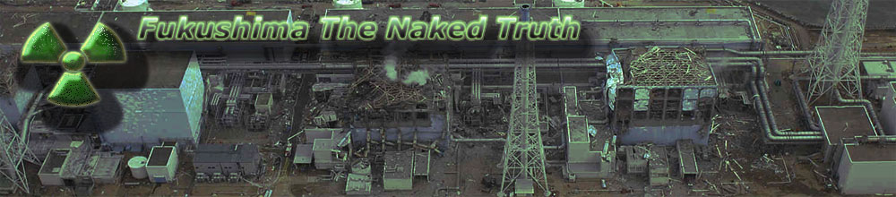 Fukushima The Naked Truth