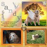 Sandy aka Thumper Avatar