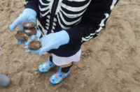 Clam Digging Class 0062.gif