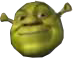 (Shrekicon)