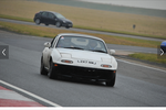 qwackingduck Avatar