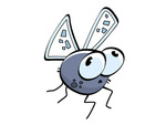 drosophila Avatar