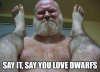 dodgy dwarves.jpg