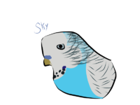 Bird for Jayjaycats.png