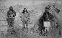 Apache_warriors_1880BW_Massai.jpg