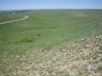 Custer route next to road.jpg