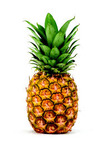 Pineapple Avatar