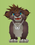 Lion Sora Avatar