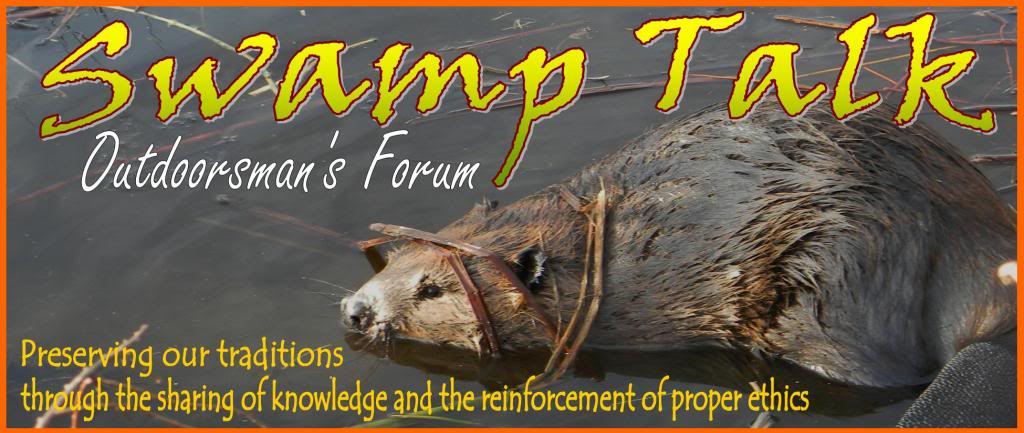 SWAMP TALK FORUM