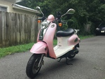 pinkscoot Avatar