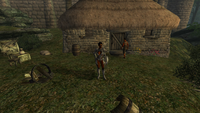 Oblivion Screenshots | Emma's Elder Scrolls Forum