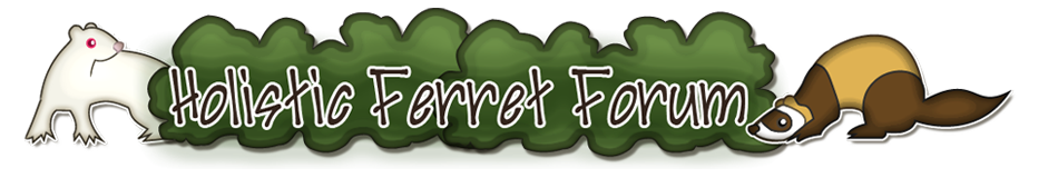 The Holistic Ferret Forum