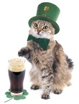 Kitty Shamrocks Avatar