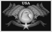 US EAGLE FLAG.PNG