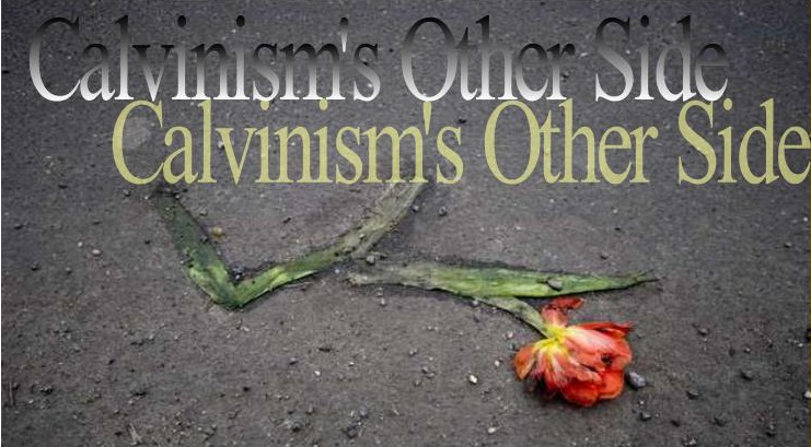 Calvinism's Other Side