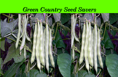 Green Country Seed Savers