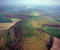 Hambledon Hill Fort.jpg