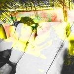 Official Kisska Topic | The NetHood