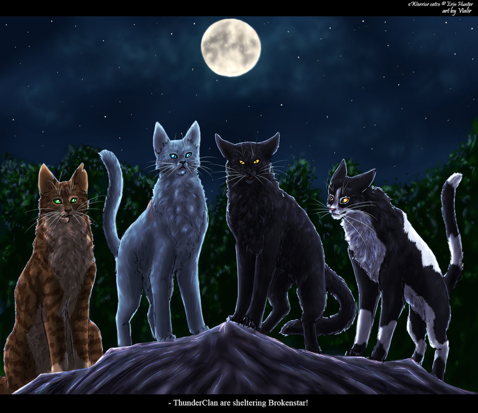 Warriors Of The Dawn Synopsis: Warrior Cats Roleplay