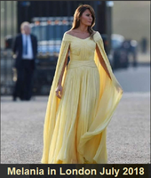 Trump Melania yellow.png