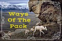 Ways Of The Pack- Myfarog Game.jpg